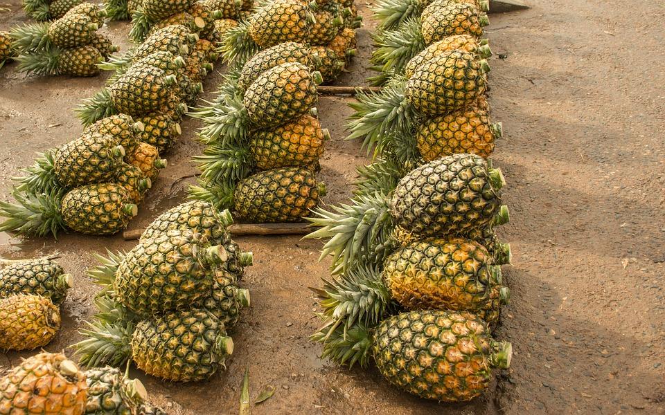 Pineapple, Fruit, Tropical, Diet, Healthy, Food