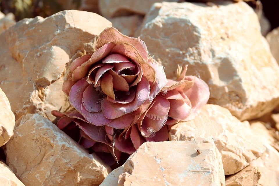Rose, Symbol, Stones, Pink, Baldwin, Commemorate, Deco
