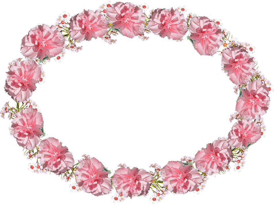 Oval, Frame, Pink, Carnation