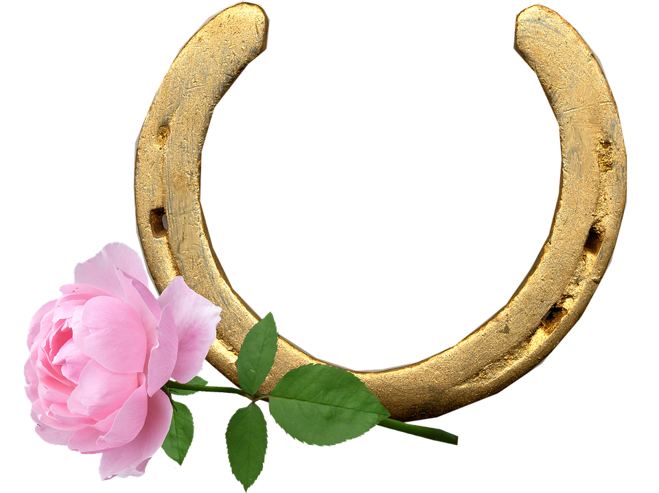 Horse Shoe, Pink Rose, Lucky, Good Wishes