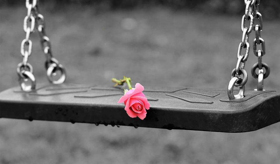 Pink Rose On Empty Swing, Stop Children Suicide