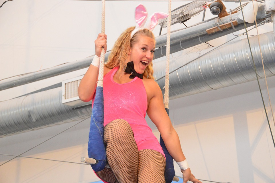 Woman, Bunny, Pink, Blonde, Perform, Sitting