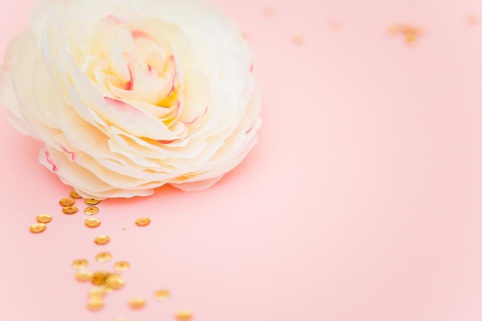 Rose, Pink, Female, Stylish