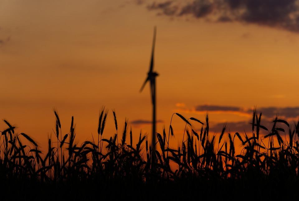 Sunset, Pinwheel, Environmental Technology