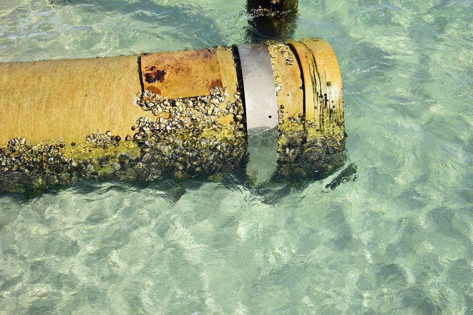 Water, Pipe, Tube, Pipeline, Sea, Ocean, Shore