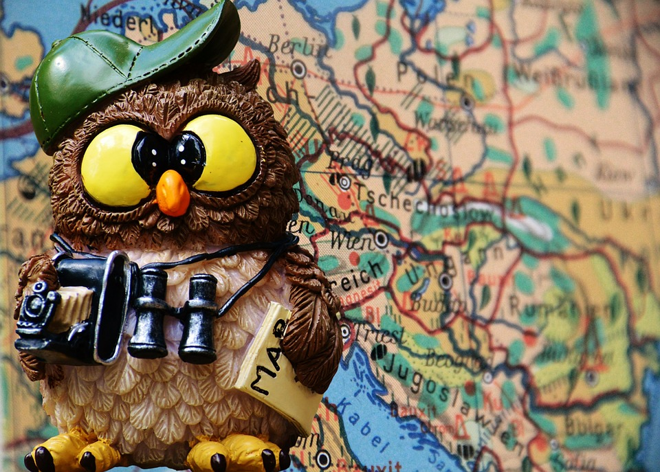 Travel, Tourist, Owl, Funny, Cute, Places Of Interest