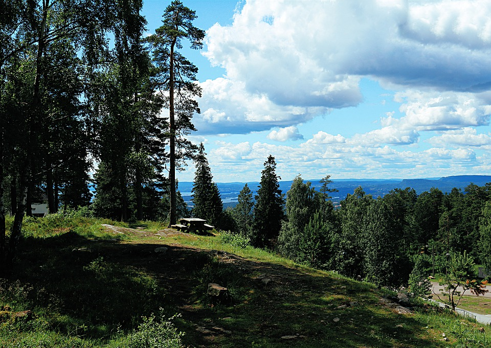 Norway, Holmenkollen, Places Of Interest, Winter Sports