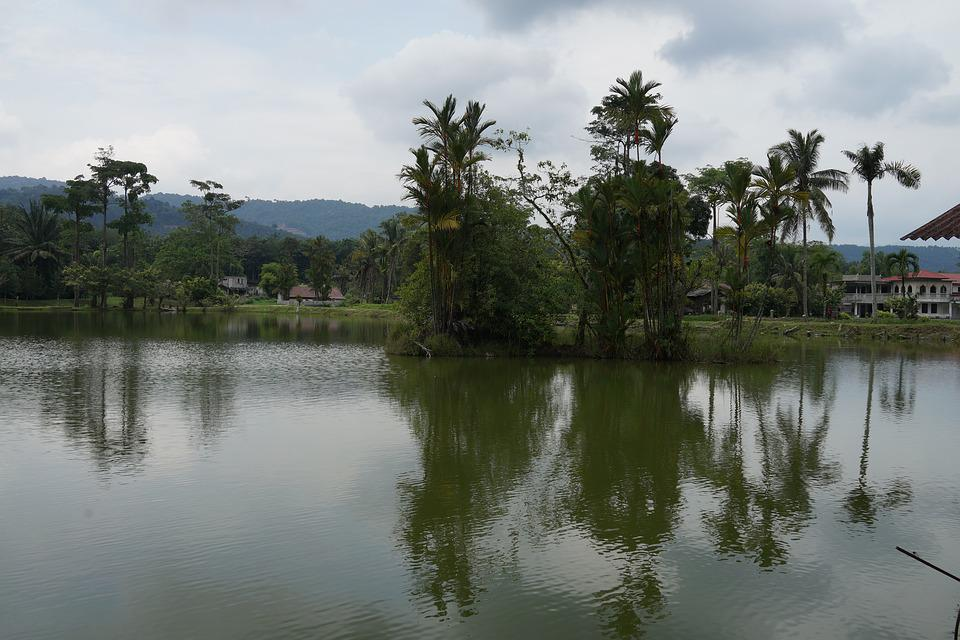Placid Lake, Reflection, Island, Tropical Malaysia