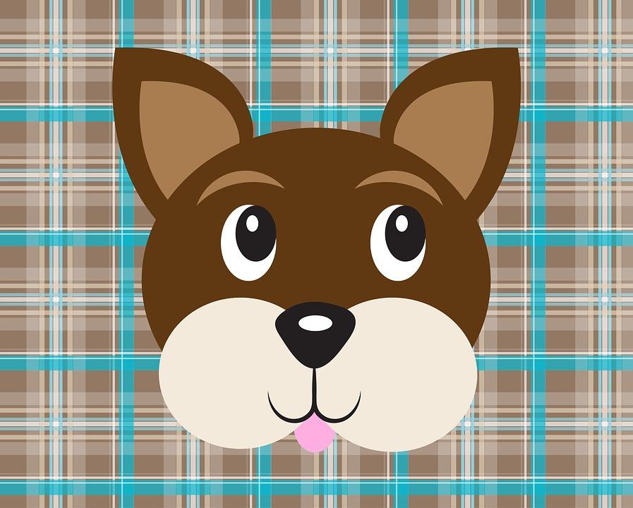 Dog, Face, Plaid, Pattern, Animal, Pet, Cute, Canine
