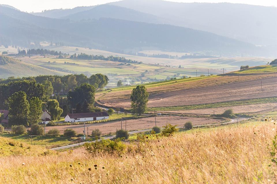 Farm, Plantation, Plains, Fields, Meadow, Prairie