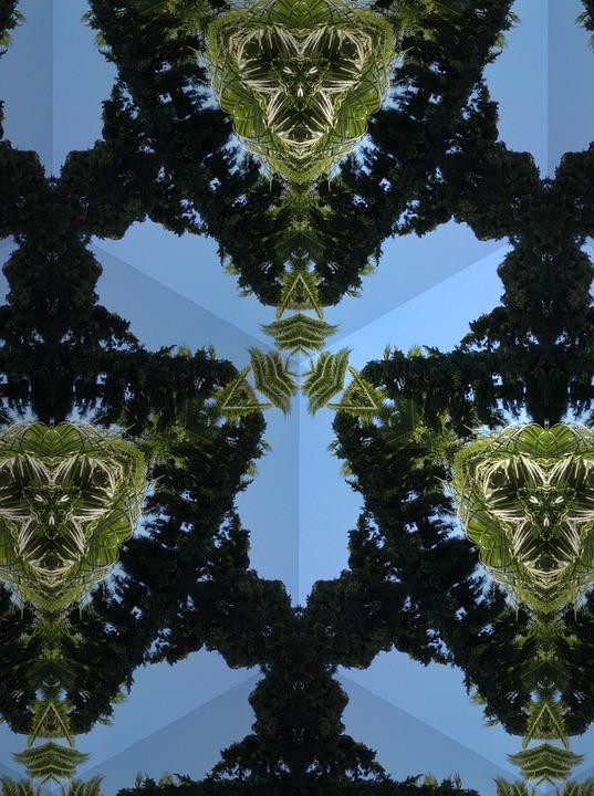 Blue, Green, Plant, Pattern, Kaleidoscope