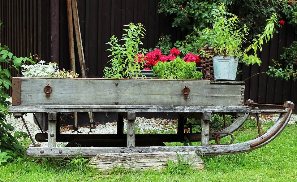 Garden, Deco, Slide, Flowers, Plant, Bucket, Ornament