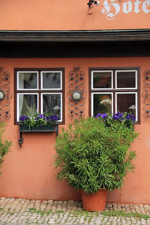 Building, Home, Idyll, Plant, Window, Flowers