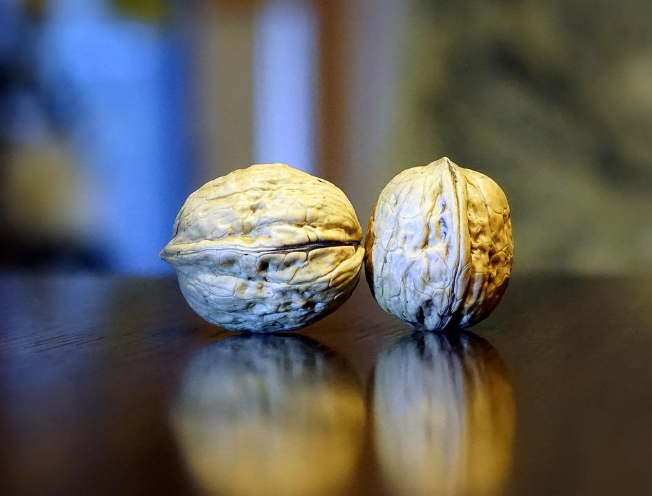 Nuts, Dried Fruits, Nature, Food, Plant, Outdoors