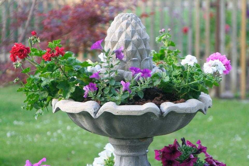Fountain, Plant, Petunia, Flowers