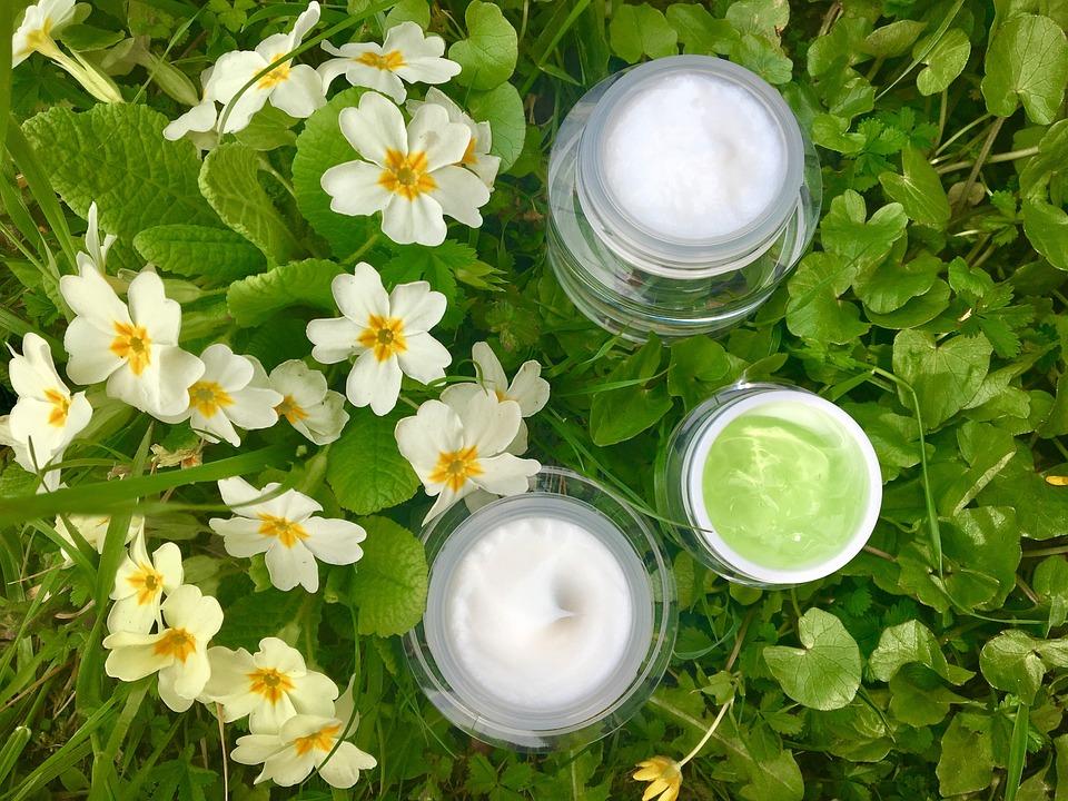Plant, Flower, Leaf, Nature, Fresh, Cosmetics, Industry