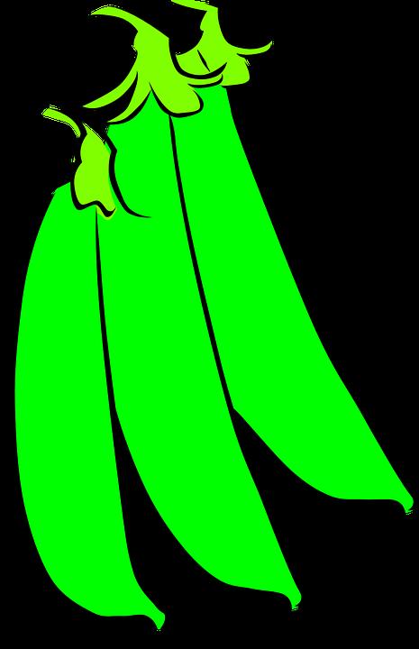 Peas, Vegetables, Garden, Plant