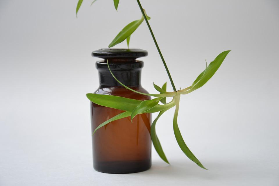 Shtanglas, Pharmacy, Chemist Glassware, Plant