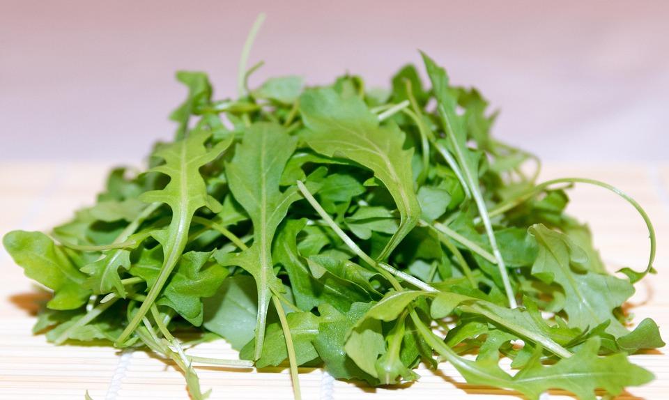 Rocket, Plant, Salad, Frisch, Green, Leaves, Herbs