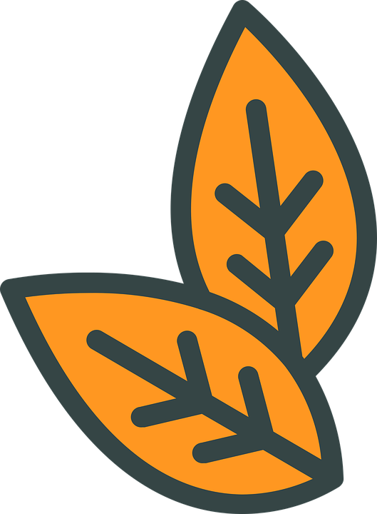 Leaves, Plant, Tobacco, Icon, Cut Out
