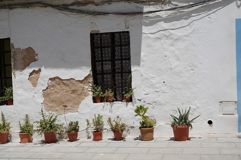 Home, White, Eivissa, Facade, Plant