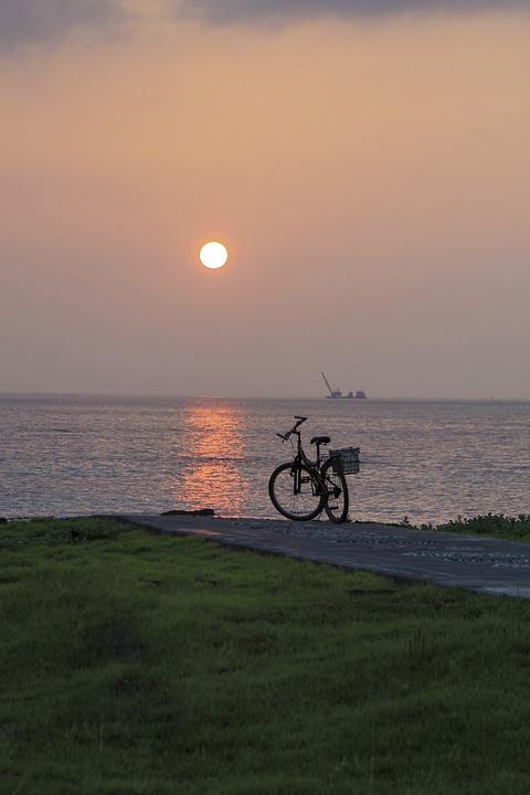 Coastal, Sunrise, Bike, Plants, Nature, Jeju Island
