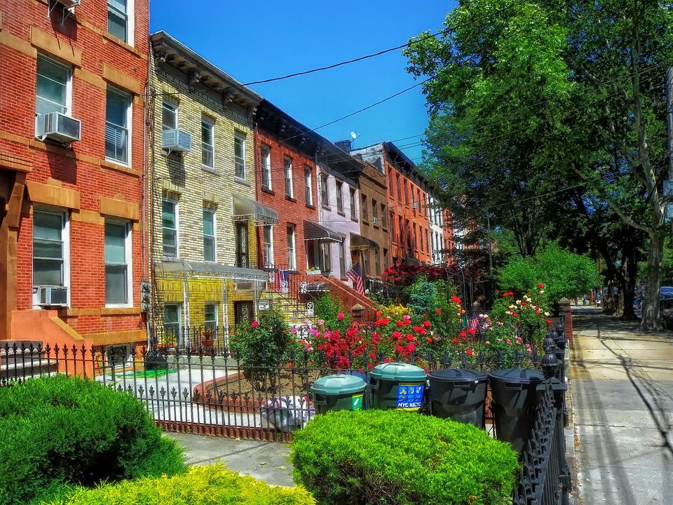 Brooklyn, New York, Urban, City, Flowers, Plants