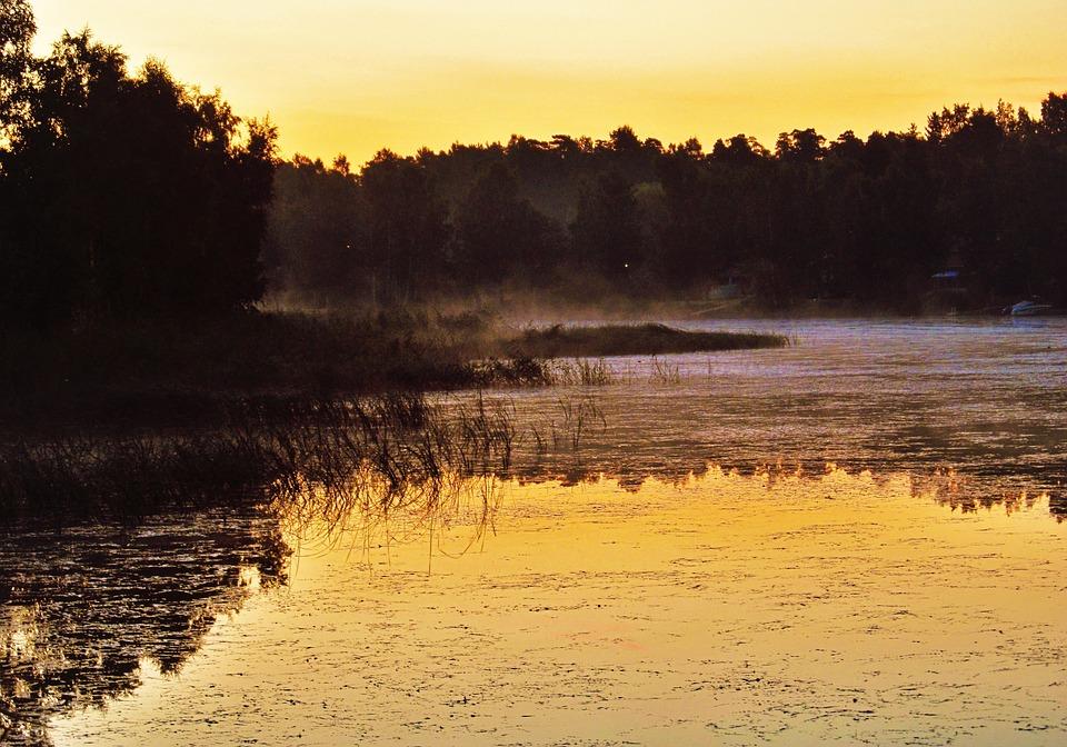 Lake, Sunrise, Sunset, Forest, Plants, Fog, Island