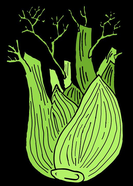 Fennel, Plants, Sheet, Green, Vegetables, Health, Food