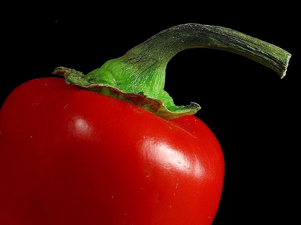Stems, Red, Peppers, Pepper, Vegetables, Plants, Flora