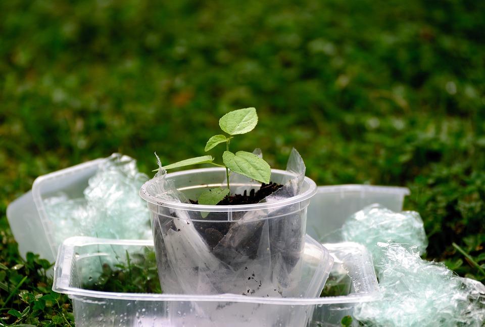 Plastic, Plastic Waste, Environment, Pollution, Waste