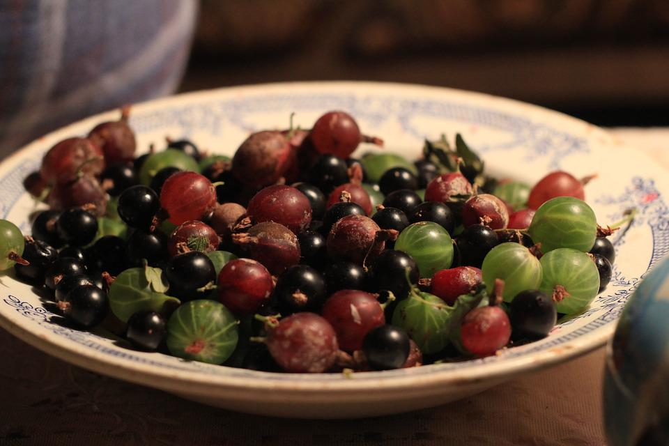 Gooseberry, Plate, Berry, Fruit, Dish, Delicious