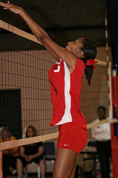 Volleyball, Action, Girls, Net, Sport, Play