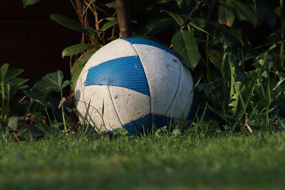 Ball, Football, Play, Grass, Football Pitch, Kick
