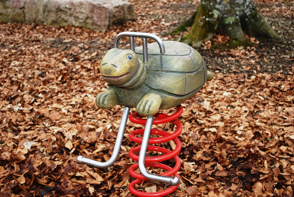 Turtle, Playground, Reptile, Ride, Amusement, Children