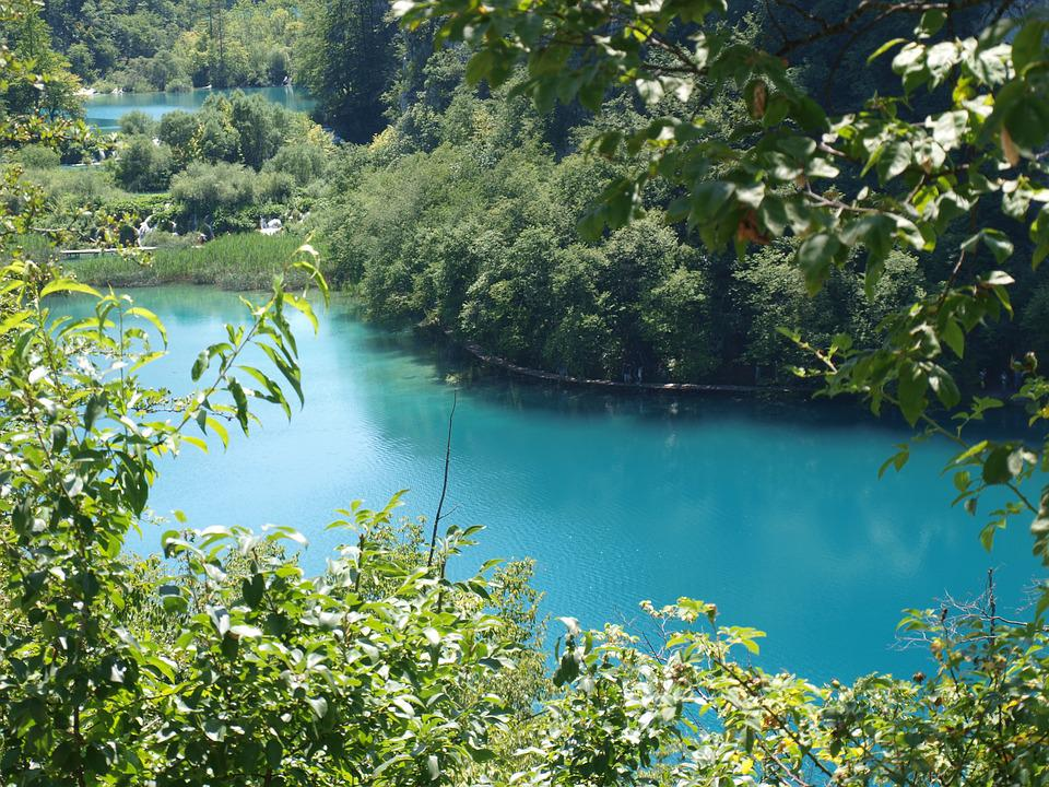 Plitvice, Croatia, Lake, Woods, Nature, Day