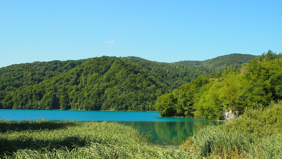 Croatia, Plitvice Lakes, Water, Waterfall, Tree