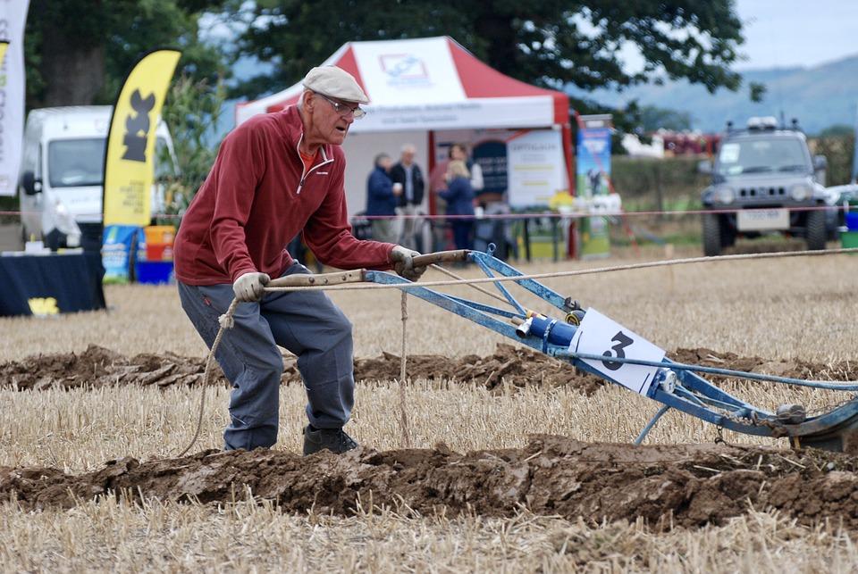 Man, Ploughing, Horses