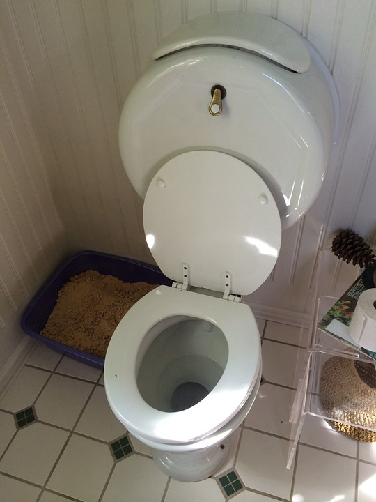 Free photo Plumbing Wc Toilet Old Fashioned Bowl Bathroom - Max Pixel