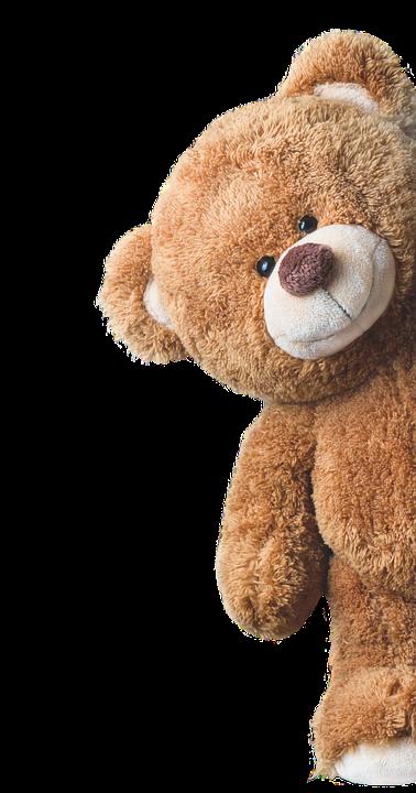 Bear, Plush, Cute, Toys, Animal, Invitation Card