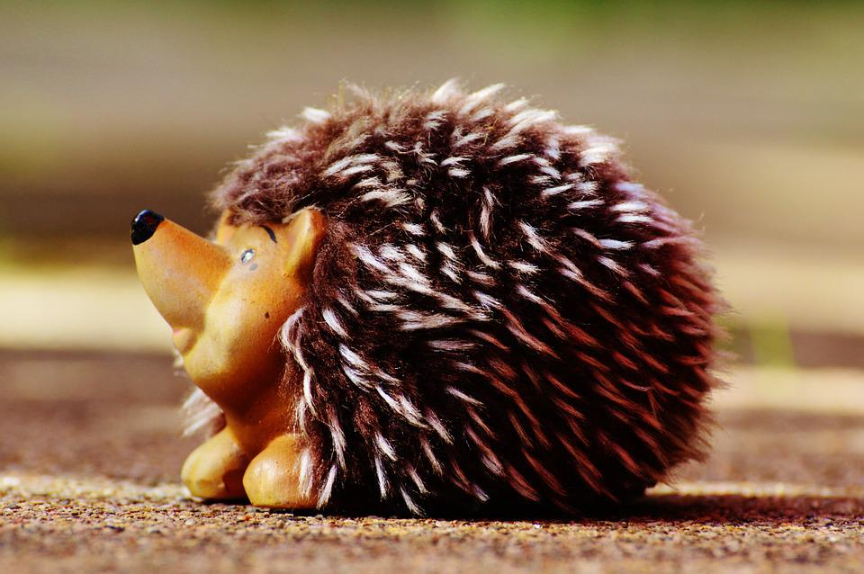 Hedgehog, Ceramic, Plush, Funny, Cute, Soft Toy