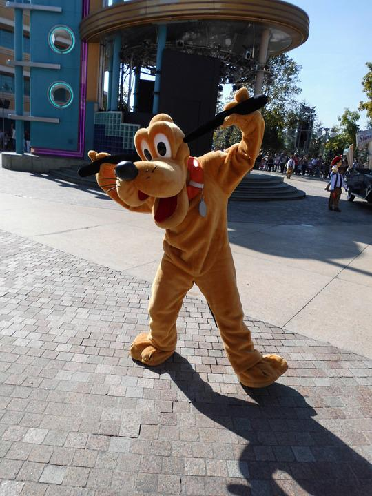 Pluto, Disneyland, Theme Park, Entertainment, Paris