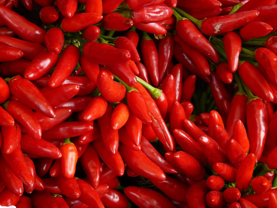 Chili, Sharp, Red, Eat, Chili Peppers, Pod, Pods
