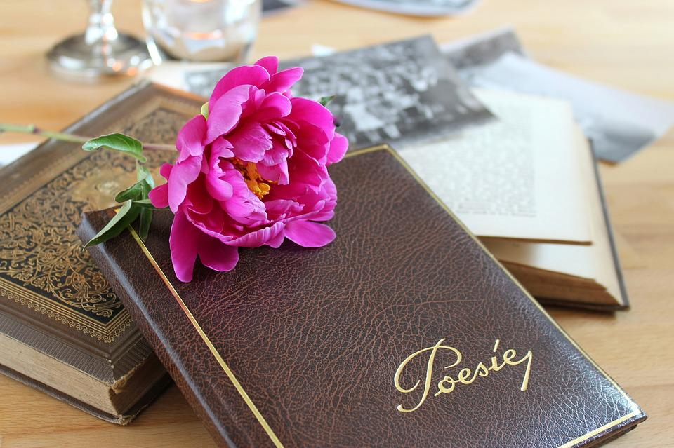 Poetry Album, Book, Leather, Old, Formerly, Nostalgia