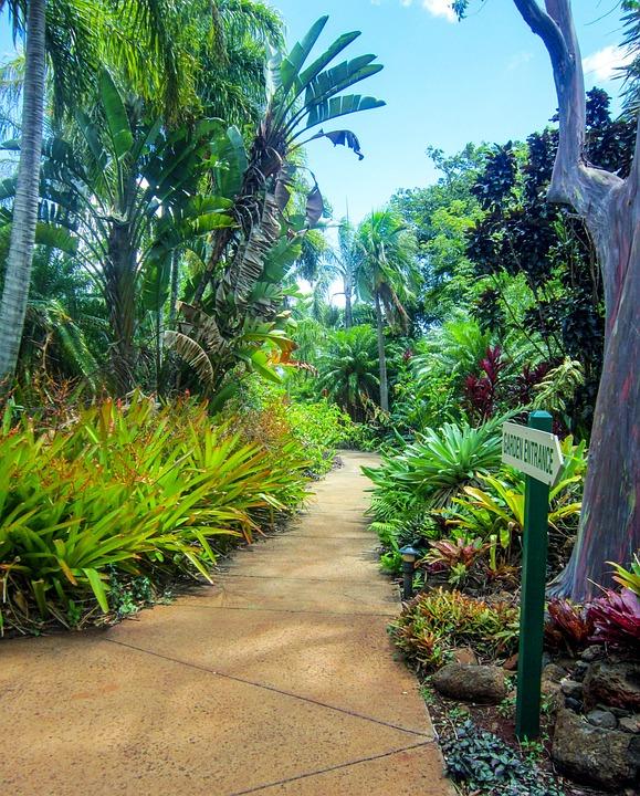 Kauai, Hawaii, Botanical Garden, Poipu