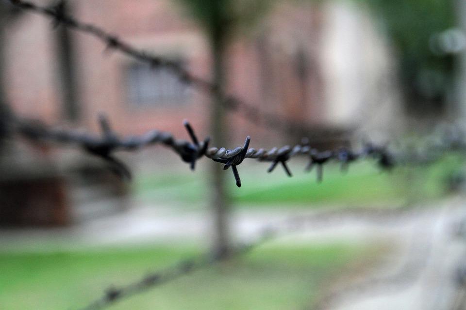 Auschwitz, Poland, War, Camp, Memorial, Fence