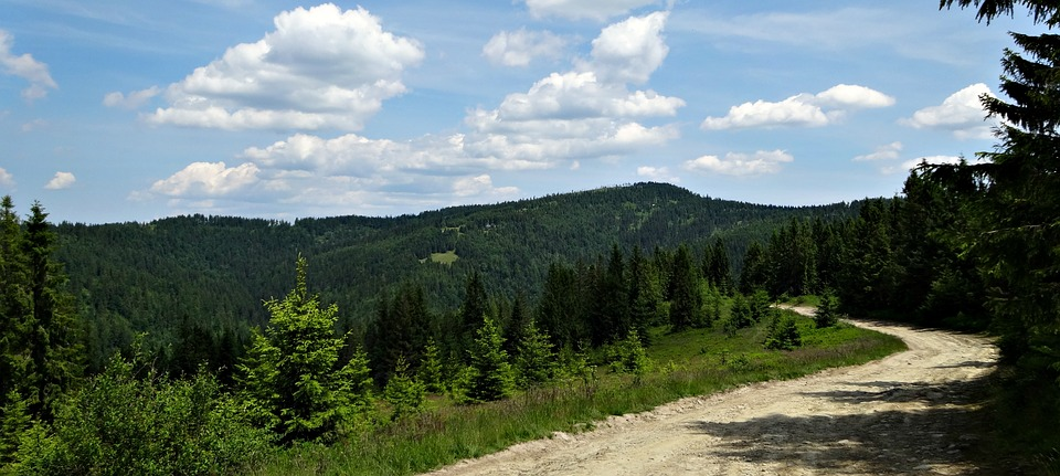 Mountains, Trail, Nature, Poland, Tourism, Hiking Trail
