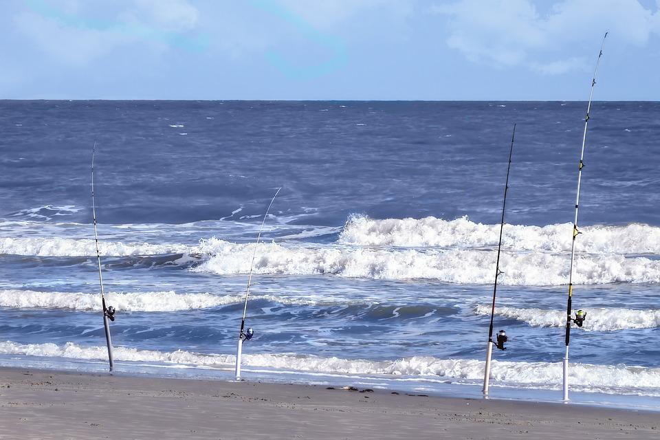 Fishing, Poles, Fishing Poles, Rod, Reel, Hobby