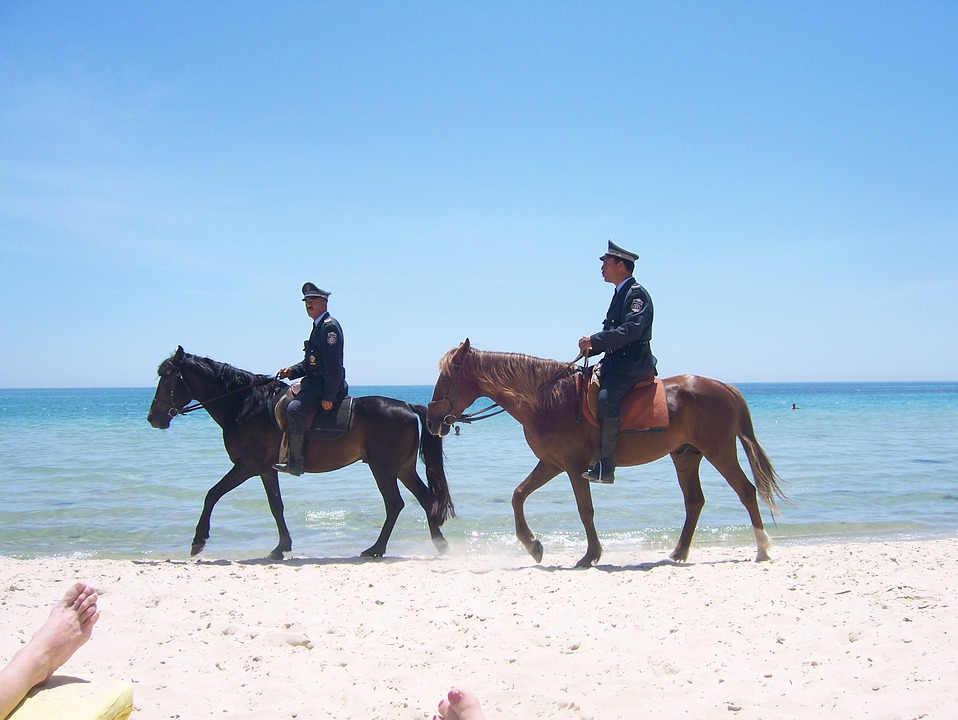 Horses, Sand, Mounted Police, Police, Ocean, Animal