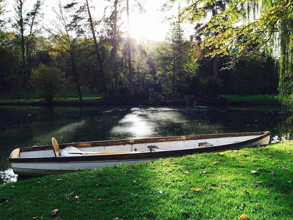 Pond, Canoe, Water, Wilderness, Wood, Forest